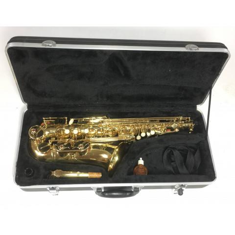 J. Michael AL-500 Sax Contralto con accessori
