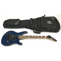 Washburn G-15V Signature Series