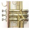 Tromba Roy Benson TR-101 Compreso Custodia