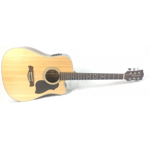 Richwood D-60-CE Master series